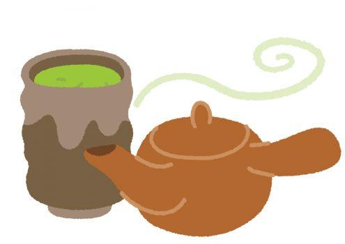 ポリフェノールのカテキンが豊富な緑茶