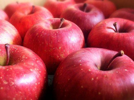 リンゴ酸が豊富なリンゴ