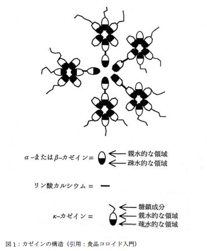 カゼインの構造