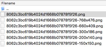 WP Multibyte Patch によるファイル名の変換