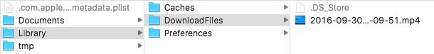 動画ファイルをダウンロードした例