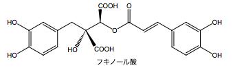 フキのフキノール酸の化学的構造