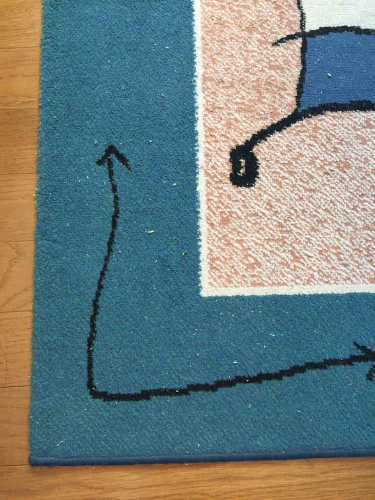 掃除前の絨毯のゴミ