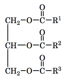 中性脂肪の化学構造