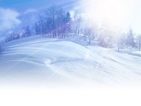 雪が降り積もる冬の景色